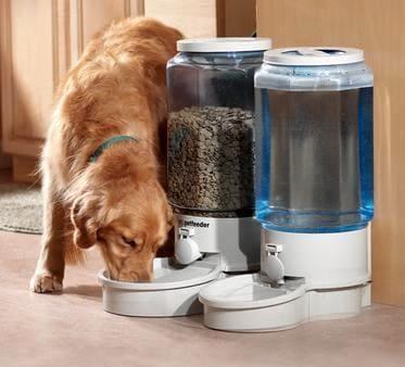 Автоматическая кормушка сухим кормом для собак