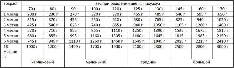 таблица веса чихуахуа при рождении и по мере роста