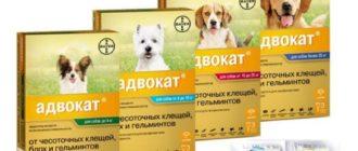 адвокат капли для собак
