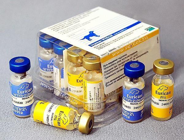 вакцинация от чумки
