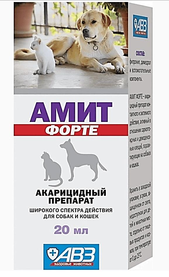 Амит-Форте